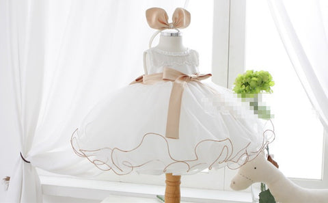 Fairy Flower Girl Dress Party Dress PD-AO026