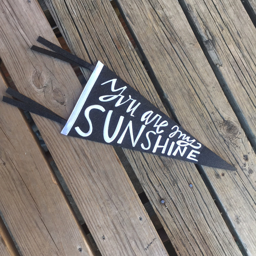 you are my sunshine pennant banner