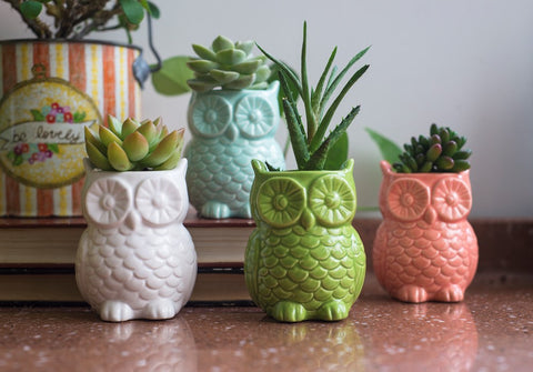 Stoneware Owl Vase with Magnet