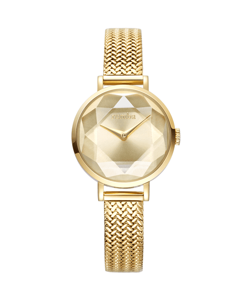 gold watch mesh band