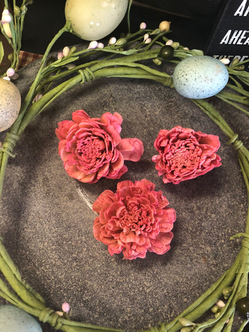 Grungy Waxed Dipped Zinnia Flowers