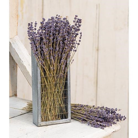 Dried Lavender Bunch 13""