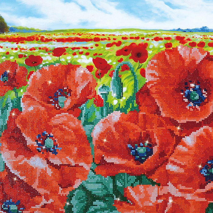 Diamond Dotz Red Poppy Field