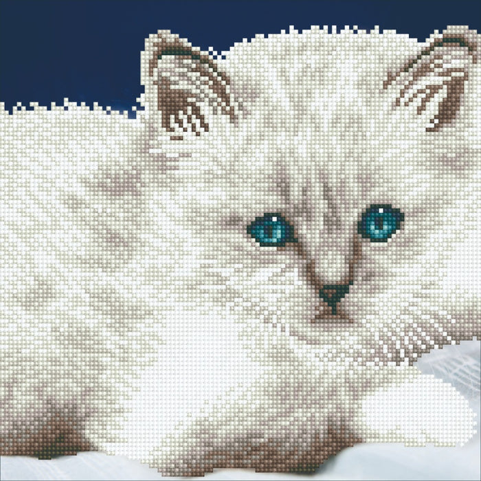 Diamond Art White Cat