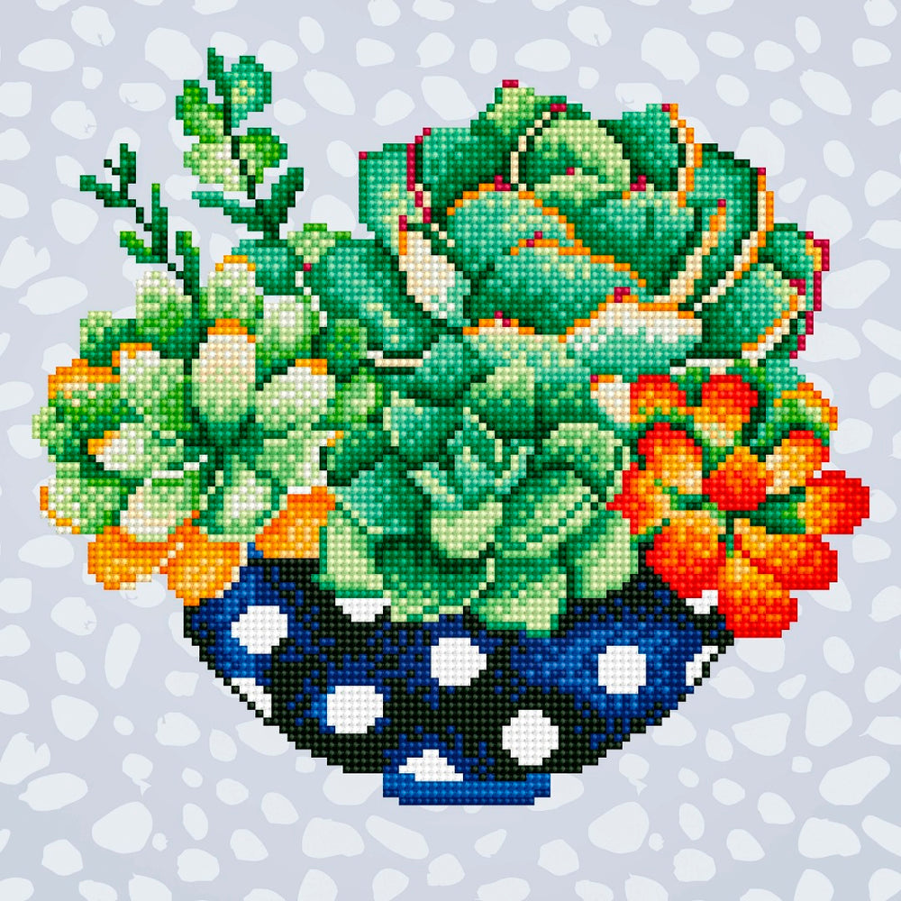 Diamond Art Succulent Bowl