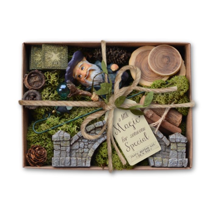 Fairy Garden Kit in a Box - Wandering Wizard