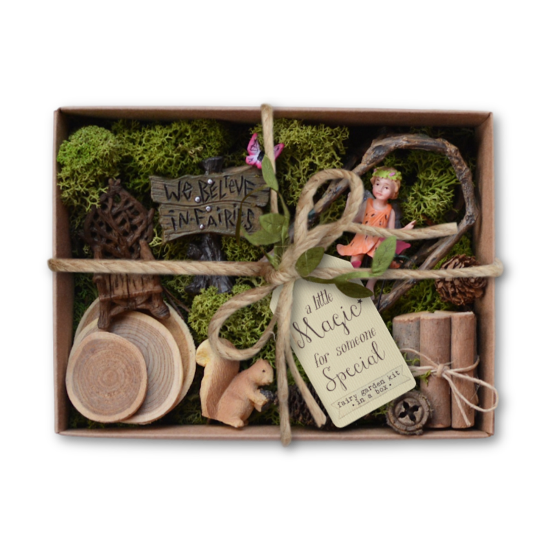 Fairy Garden Kit in a Box - We Believe