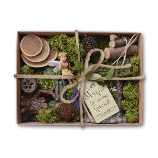 Fairy Garden Kit in a Box - Fairy Forest
