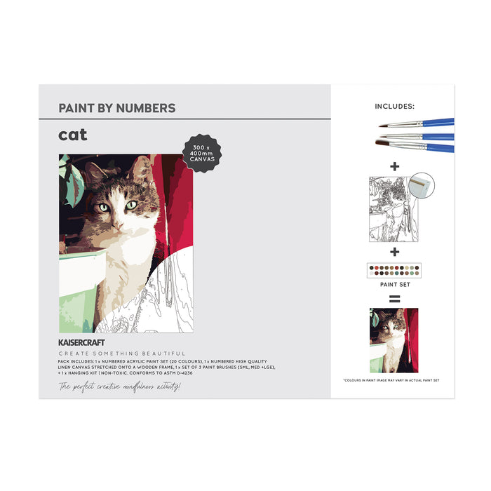Paint By Numbers - Cat