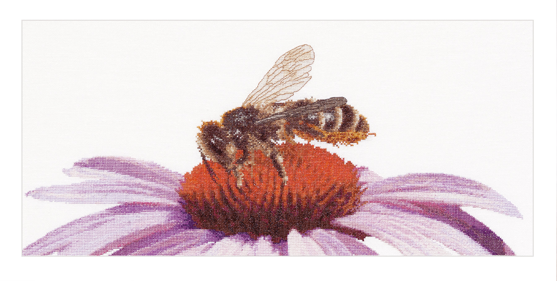Bee On Echinacea - Cross-Stitch Kit