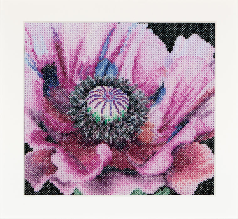 Poppy cross-stitch