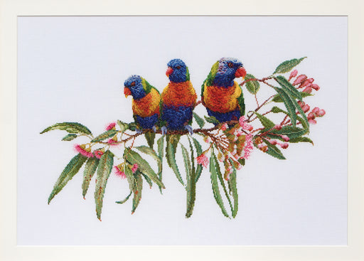 Lorikeets cross-stitch