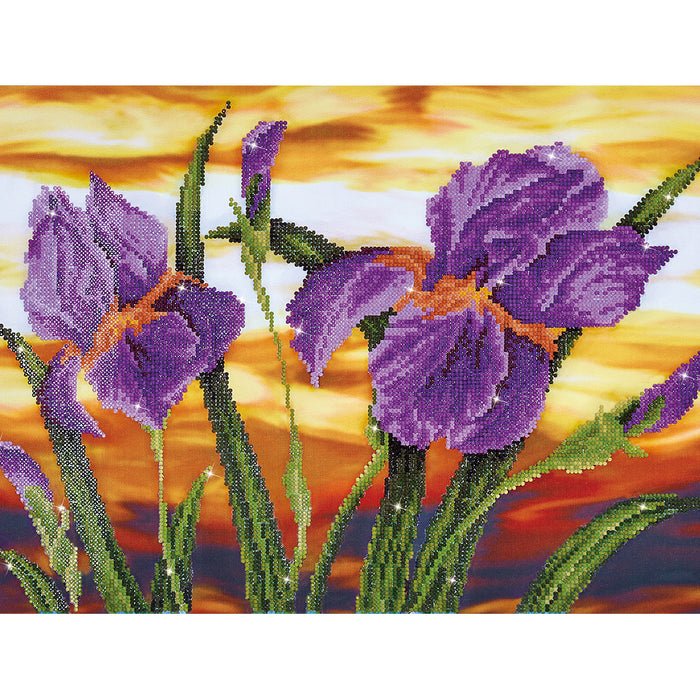 Diamond Dotz Iris Sunset