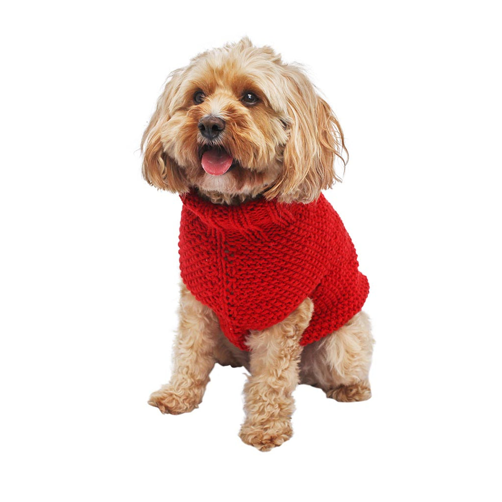 Dog with red doggie coat