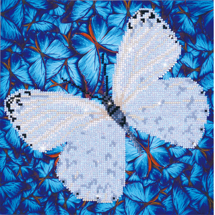 Diamond Dotz Flutterby White