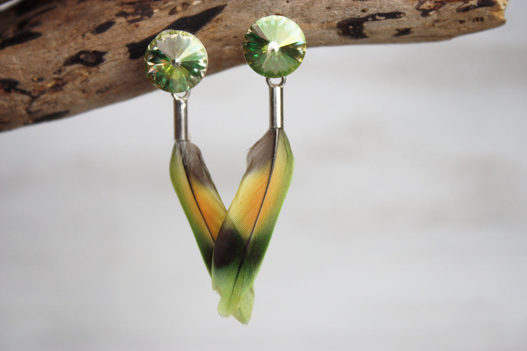 lovebirds luminous green no5