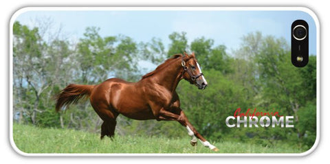 CC2 California Chrome iPhone Case