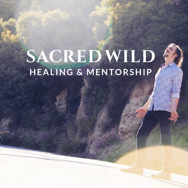 SACRED WILD HEALING—PRIVATE MENTORSHIP REGISTRATION