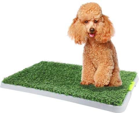 Green Dog Trainer Toilet 68 x 42cm