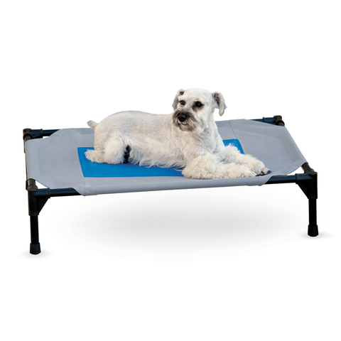 Elevated Coolin' Pet Cot Bed Grey/Blue