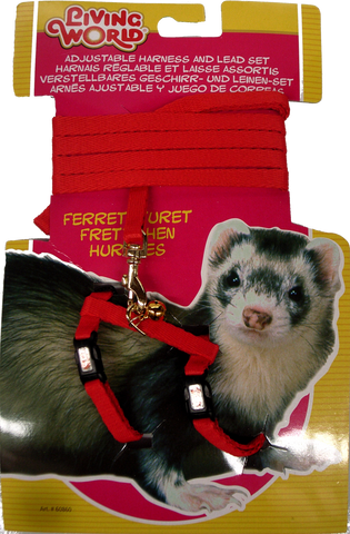 Living World Ferret Harness/Lead set