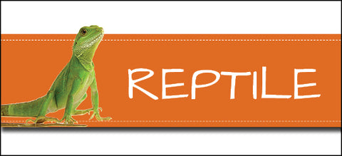 Reptile Banner