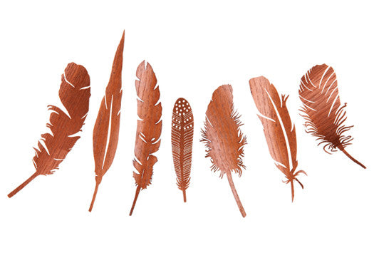 Nightfall Paper Assorted Feathers Copper Papaya - 1