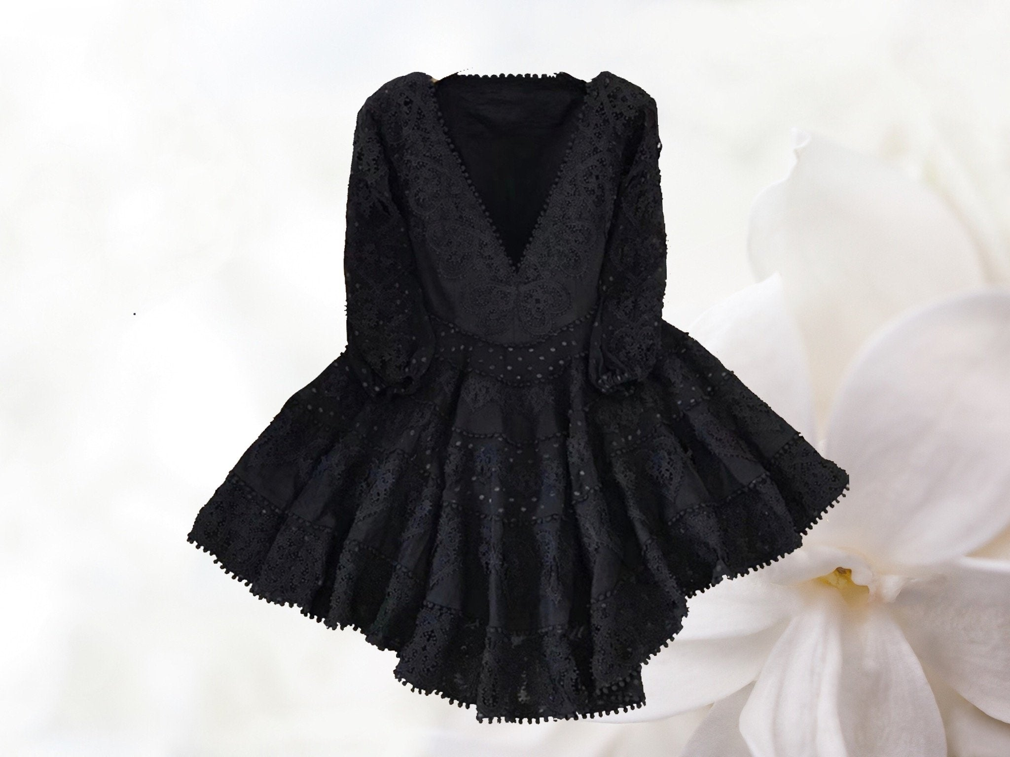 True Lover V Neck Embroidered Lace Mini Skater Dress in Black - Lookbook Boutique