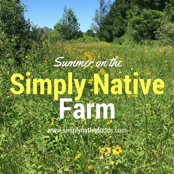 Summer Sights on the Simply Native Farm