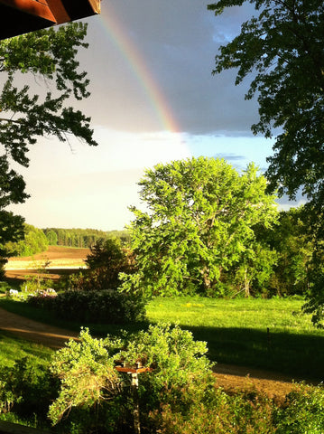 A rainbow arcs over  the sparkling green forage after a refreshing-midwestern summer shower.
