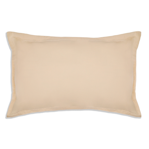 products/BEIGE_PLAIN_BEDSHEET_2.png