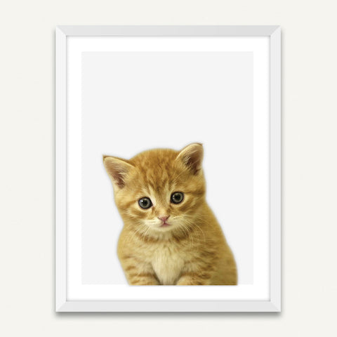 Little Kitten - Minimalist Framed Wall Art