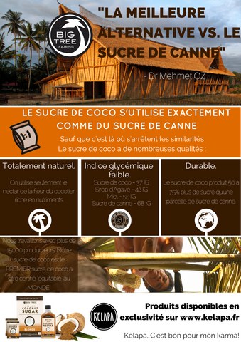 Le sucre de coco Big Tree Farms en Infographie
