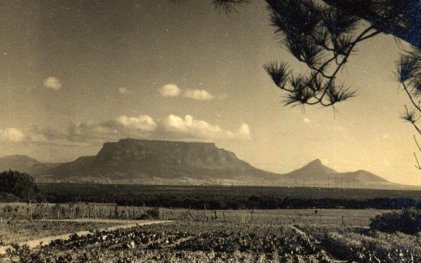 De Grendel Table Mountain
