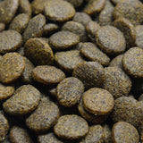 Grain Free Tuna, Salmon, Sweet Potato and Broccoli Adult Dog Food Kibble Image - HarrierProPetFoods.co.uk