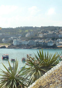 view from cheval roc 2nd bedroom across st.ives cottages