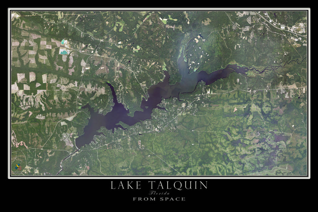 Lake Talquin Florida From Space Satellite Poster Map - TerraPrints.com