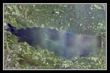 The Oneida Lake New York Satellite Poster Map