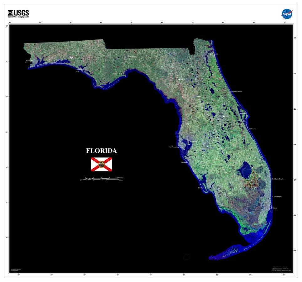 Florida Satellite Imagery State Map Poster - TerraPrints.com