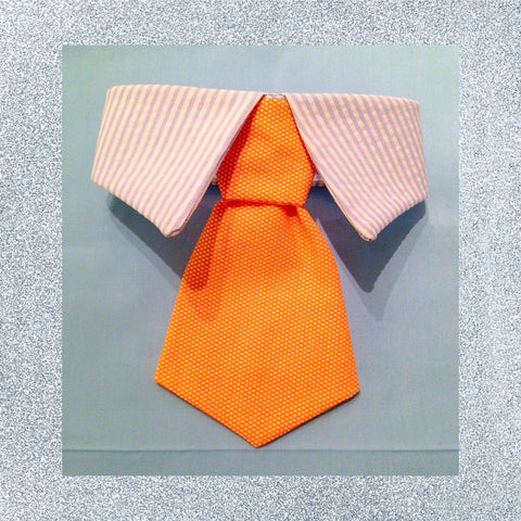 Mr Seersucker Necktie Collar Set - Snort Life, Mini Pig Clothes