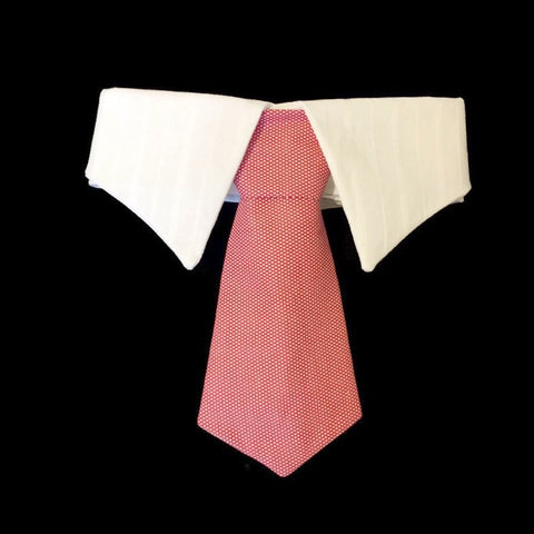 Mr Burns's Neck Tie Collar Set - Snort Life, Mini Pig Clothes