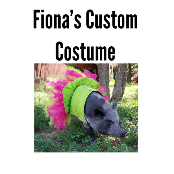 Fiona's Custom Costume