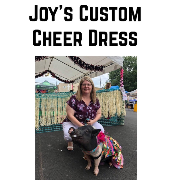 Joy's Custom Cheer Dress