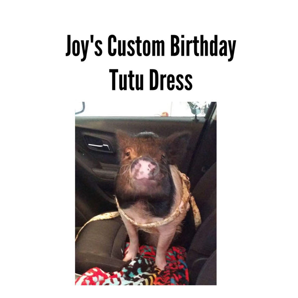 Joy's Custom Birthday Tutu Dress - Snort Life