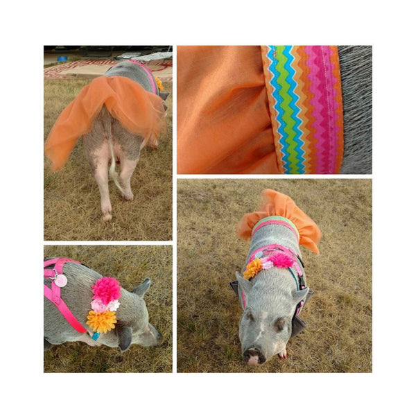 Tutti Fruitti Collar & Interchangeable Skirt Set - Snort Life  - 6