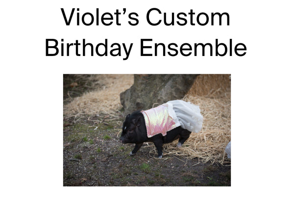 Violet's Custom Birthday Ensemble