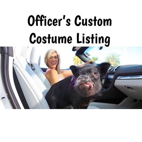 Officer's Custom Costume Listing