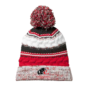 Pom Pom Team Beanie (Embroidered)