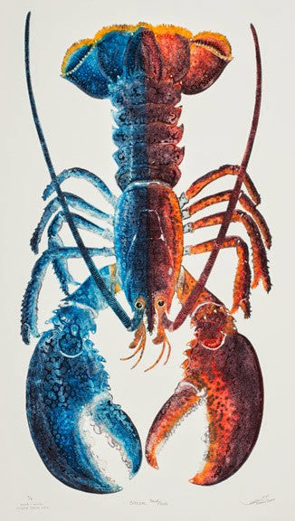 Special - Red and Blue Lobster