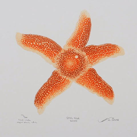 Star-Fish 2000 - Starfish